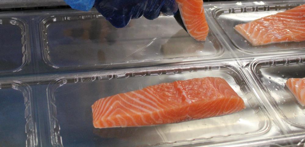 exclusivité Mericq: filet de poisson frais avec emballage micro-ondable pour cuisson façon papillote