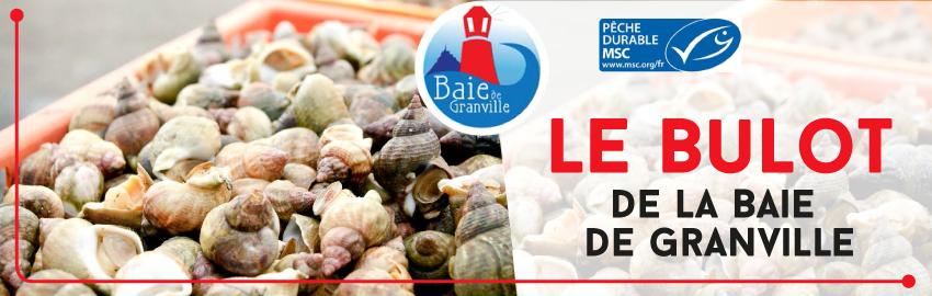 Obtention du label IGP pour les bulots de la baie de Granville Kermarée