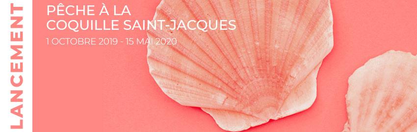 Semaine de la Coquille Saint-Jacques